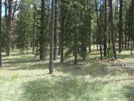 Lot 11 Greer Acres Subdivision Greer AZ, 85927