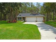 9152 Mossy Oak Lane Clermont FL, 34711