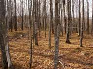 South Maple Rd Lot 16 Phelps WI, 54554