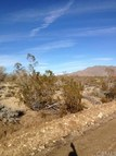 9442 High Road Lucerne Valley CA, 92356