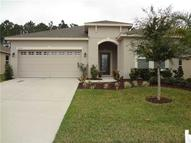 3287 Plumlee Ct Grand Island FL, 32735