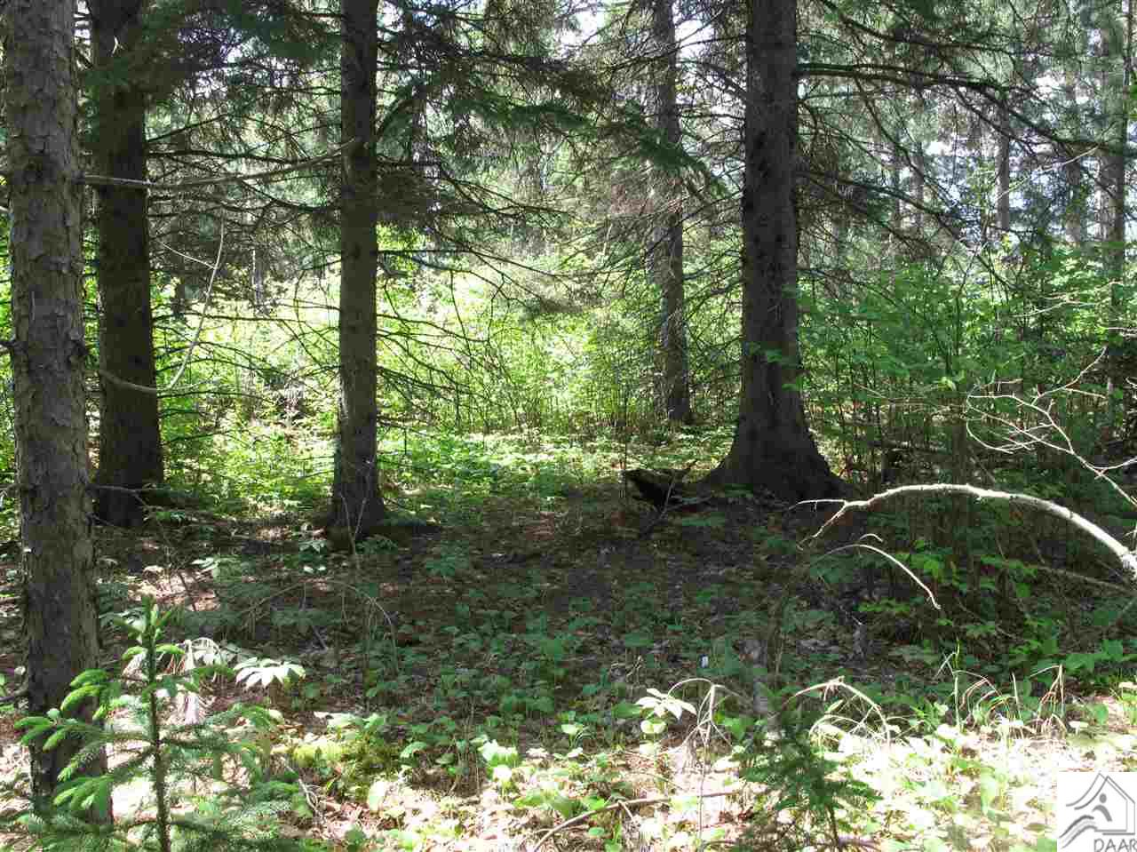 Lot 19 High Ridge Dr Just Up The Sugarloaf Rd Approx 1 Mile Schroeder MN, 55613