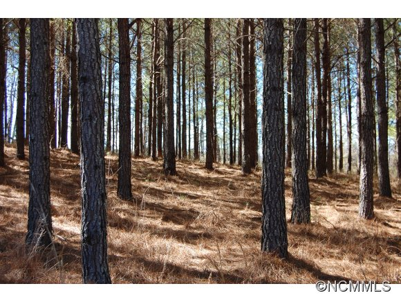 Lot 6 Stable Place Rutherfordton NC, 28139