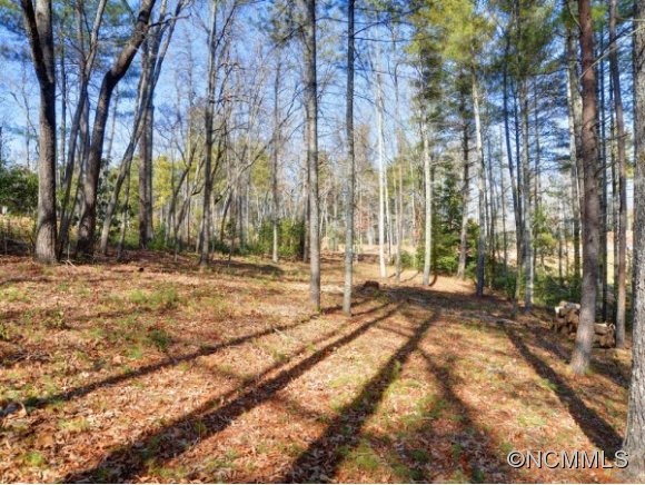 Lot 35 Jake Ridge Trail Fletcher NC, 28732