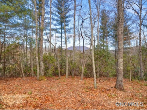 Lot 12 Sweetgum Hill Fletcher NC, 28732